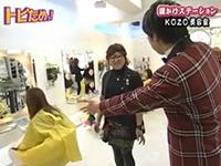 ニコニコスタイル(TV動画)